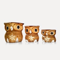 Wooden owl statues.