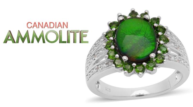 Canadian Ammolite