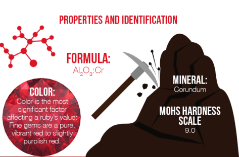 Ruby Infographic 4